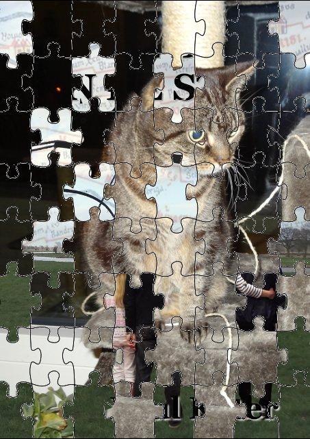 puzzel11
